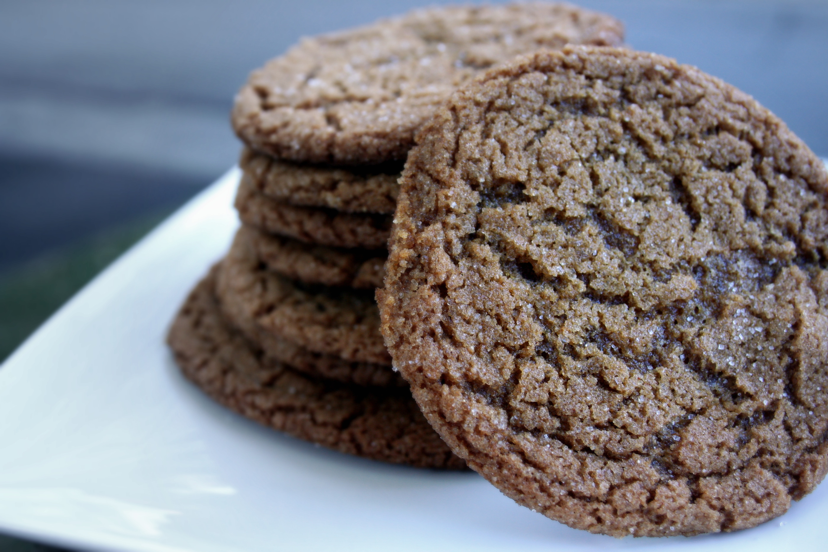 Ginger Molasses Crinkle Cookies | Hilary Makes
