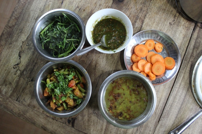 All the components of dal bhat, together as one (starting in bottom right and going clockwise, there's the dal, vegetable curry, curried spinach, pickle, and carrots)