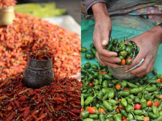 Yummy, beautiful chillies!